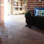 Terracotta Wand